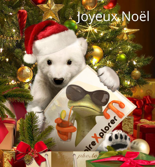 Noël LoireXplorer