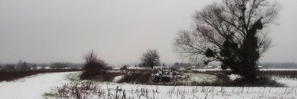 loirexplorer-neige