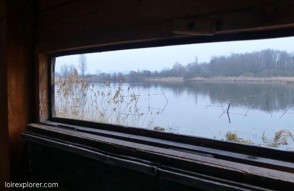 observatoir de grues cendrées dans le parc naturel régional de la Brenne