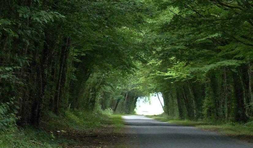 Sur une route de Sologne avec Marie du Berry « un jour avec » Le Grand Meaulnes - crédit photo copyright yseult-carre.com